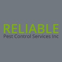 Reliable Pest Control Service