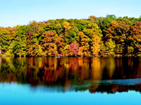 Gallery Image autumn lake image.jpg