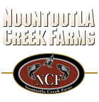 Noontootla Creek Farms