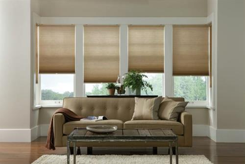If your living room has several windows, install energy efficient cellular shades. They provide a layer of insulation to help keep your rooms cool in the summer and warm in the winter!