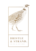 Bristle and Strand Salon and Dry Bar