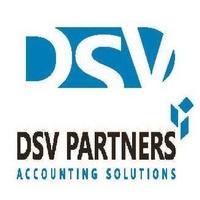 DSV Partners