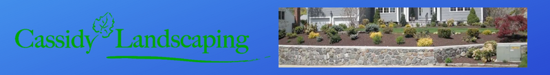Cassidy Landscaping