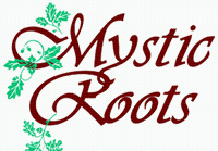 Mystic Roots Salon & Spa