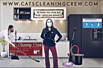 Cat's Cleaning Crew