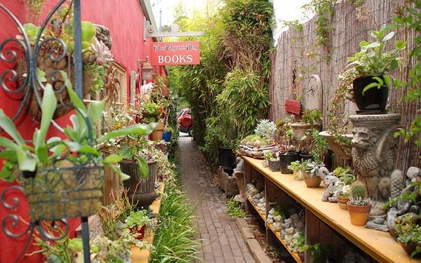 The Secret Garden adjacent to the bookstore.