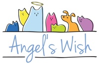 Angel's Wish