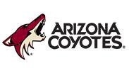 Arizona Coyotes Hockey Club