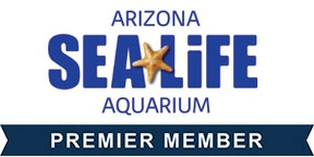 SEA LIFE AZ Aquarium