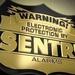 Sentry Alarms LLC
