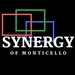 Synergy of Monticello, Inc.