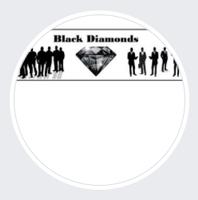 Black Diamonds Academic Success, Inc.