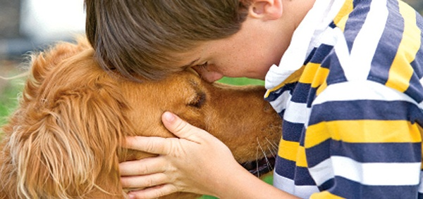 Gallery Image little-boy-and-a-dog.jpg