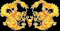 Canton Dragon Chinese Cuisine
