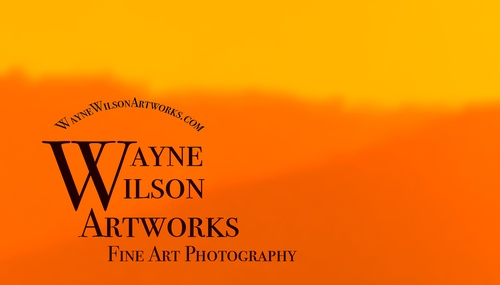 Wayne Wilson Photography