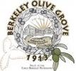 Berkeley Olive Grove 1913