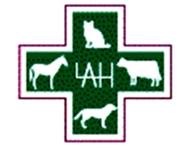 Lloydminster Animal Hospital