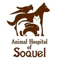 Animal Hospital of Soquel