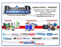 Diamond Business Services, Inc.