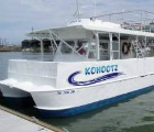 Dolphin Encounters & Lighthouse Boat Tours - Kohootz