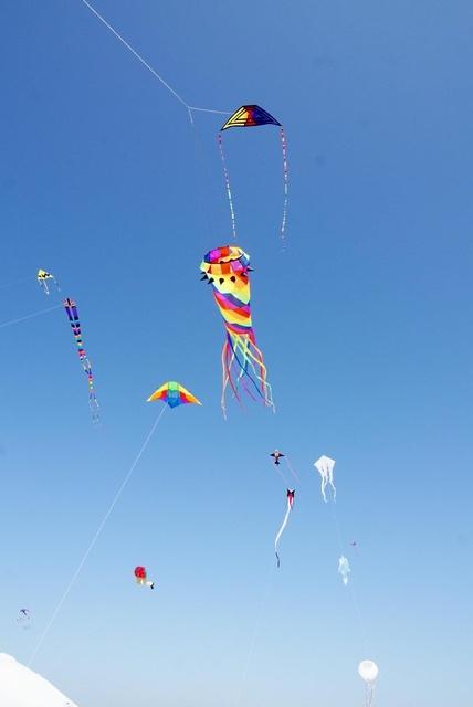 Gallery Image Fly-It-Port-A-port-aransas-tx-store-kites-sky.jpg