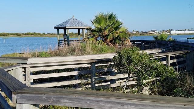 Gallery Image wetlands%20close%20up%2050.jpg