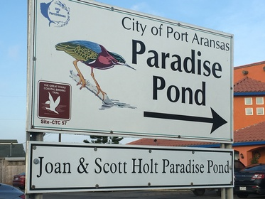 Joan & Scott Holt Paradise Pond