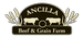 Ancilla Beef and Grain