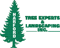 Harford Tree Experts & Landscaping Inc.