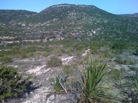 Hill Country State Natural Area Partners
