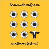 Beaver Dam Farm Sunflowers