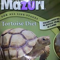 We carry turtle food!