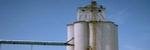 Bartlett Grain Company