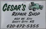 Cesar's Repair Shop