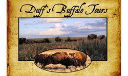 Gallery Image Duff-s-Buffalo.jpg