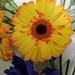 Hendricks Florist