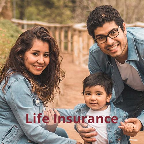 Gallery Image life-insurance.jpg