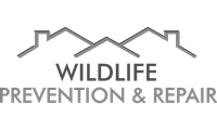 Wildlife Prevention & Repair