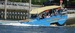 Cape Cod Duckmobiles