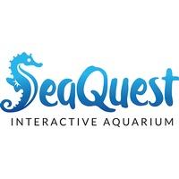 SeaQuest Layton