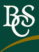 BSC Group, LLC
