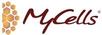 Kaylight Corporation