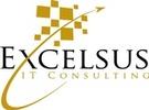 Excelsus IT, LLC
