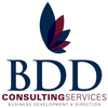 BDD Consulting Services