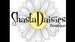 Shasta Daisies Boutique