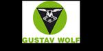 Gustav Wolf, USA