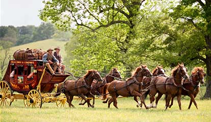 Gallery Image stagecoach-two-drivers-field-green-414x240.jpg