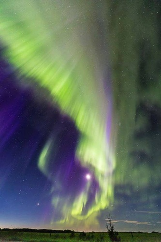 Gallery Image Aurora.jpg