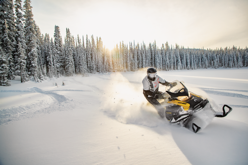 Gallery Image SKI_MY21_UTE_Tundra_Sport_Neo__170920152616_lowres.png