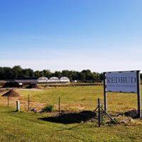 Redbud Farms & Nurseries